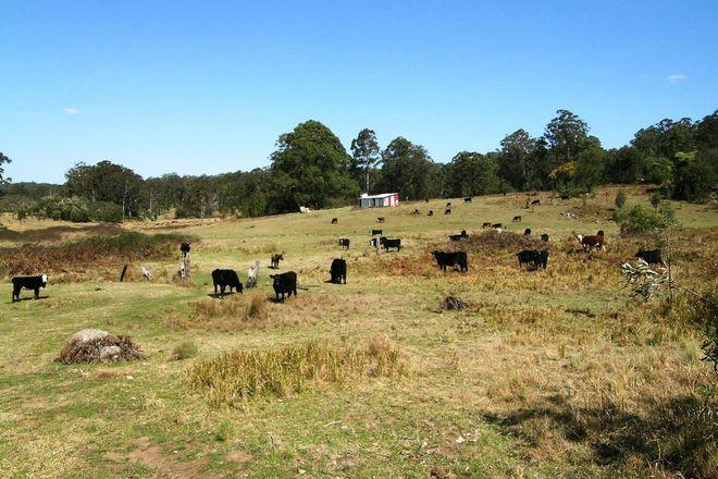 Picture of 1732-1792 Cochrane Firetrail, CARRAI NSW 2440