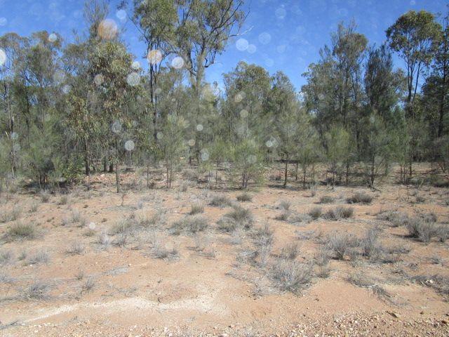 LOT 107 FORESTRY RD WERANGA, Tara QLD 4421, Image 0