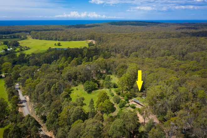 Picture of 51 Doctor George Mountain Road, TANJA NSW 2550