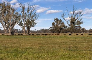 Picture of - Young Road & Parker Road, Koondrook VIC 3580