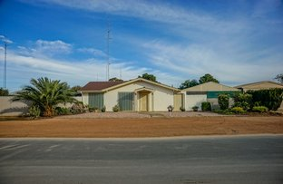 Picture of 2 David Street, New Town SA 5554