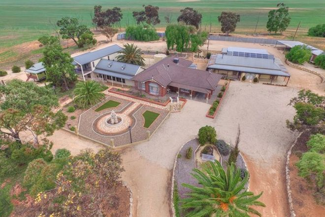 Picture of 358 Taplan Road, LOXTON SA 5333