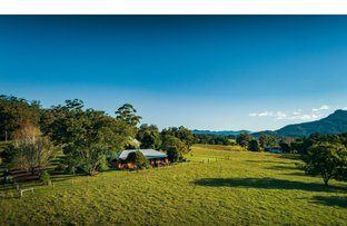 Picture of 725 Timboon Road, Bellingen NSW 2454