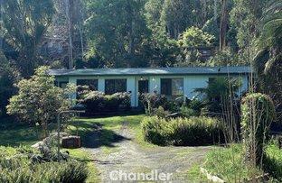 Picture of 4 Laurel Grove, Belgrave VIC 3160