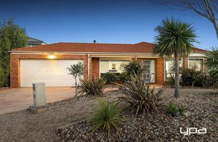 Picture of 53 Jindabyne Avenue, Taylors Hill VIC 3037