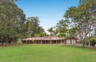 Picture of 56 Clarence Drive, Helensvale QLD 4212
