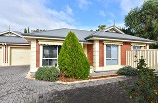 Picture of 20B Branksome Terrace, Dover Gardens SA 5048