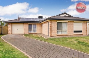 6 Darlton Court, Andrews Farm SA 5114