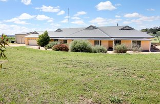 Picture of 231/172 Moculta Road, Penrice SA 5353