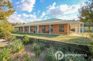 Picture of Robin Hill NSW 2795