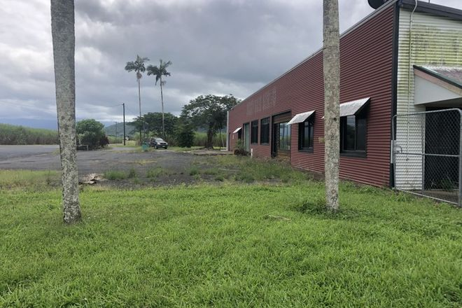 Picture of 241 Jack Evans Dr, SILKY OAK QLD 4854