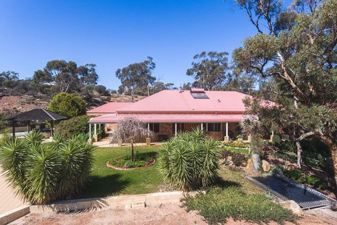 Picture of 422 Dangin North Road, DULBELLING WA 6383