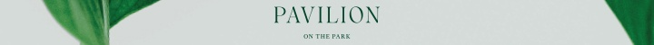 Branding for Pavilion on The Park
