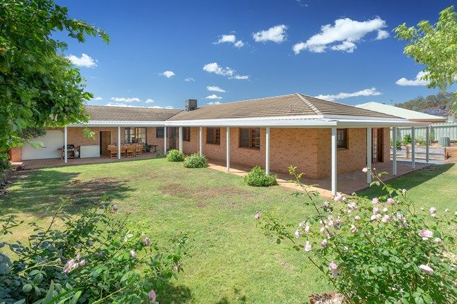 Picture of 509 Munro Street, HAMILTON VALLEY NSW 2641