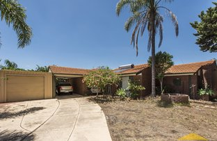 Picture of 4 Hawkesbury Drive, Willetton WA 6155