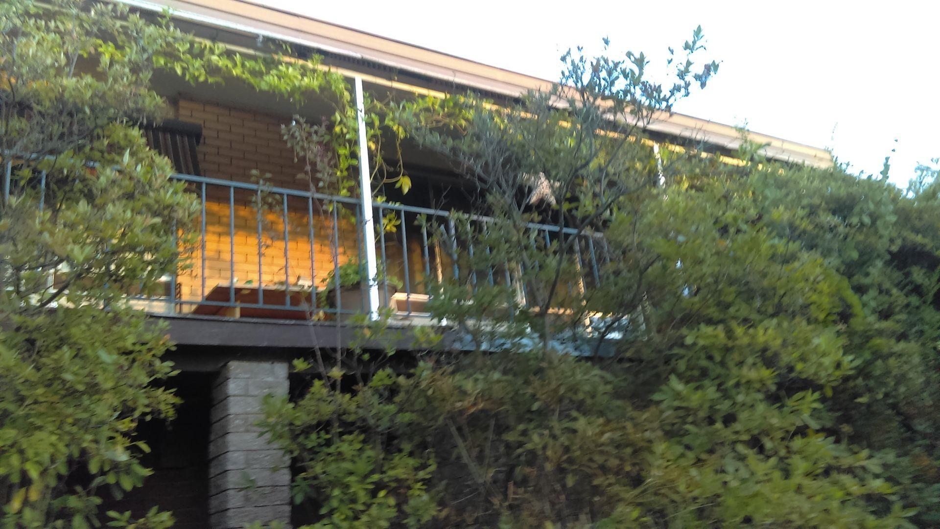 9 Banool Avenue, Myrtleford VIC 3737, Image 0