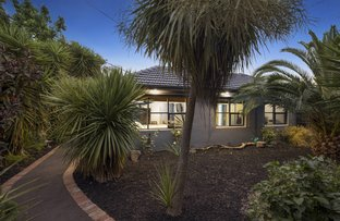 Picture of 6 Chesterville Drive, Bentleigh East VIC 3165