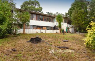 Picture of 217 Mt Morton Road, Belgrave Heights VIC 3160