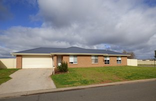 Picture of 2 Howlong Crescent, Griffith NSW 2680