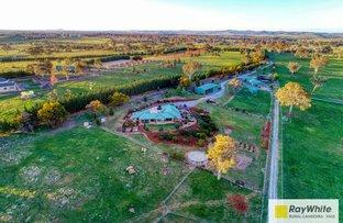 Picture of 4 Ryslipp Drive, Murrumbateman NSW 2582