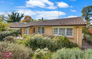 Picture of 5 Pine Street, Hazelbrook NSW 2779