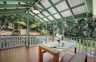 Picture of 7 Turnipwood Drive, Buderim QLD 4556