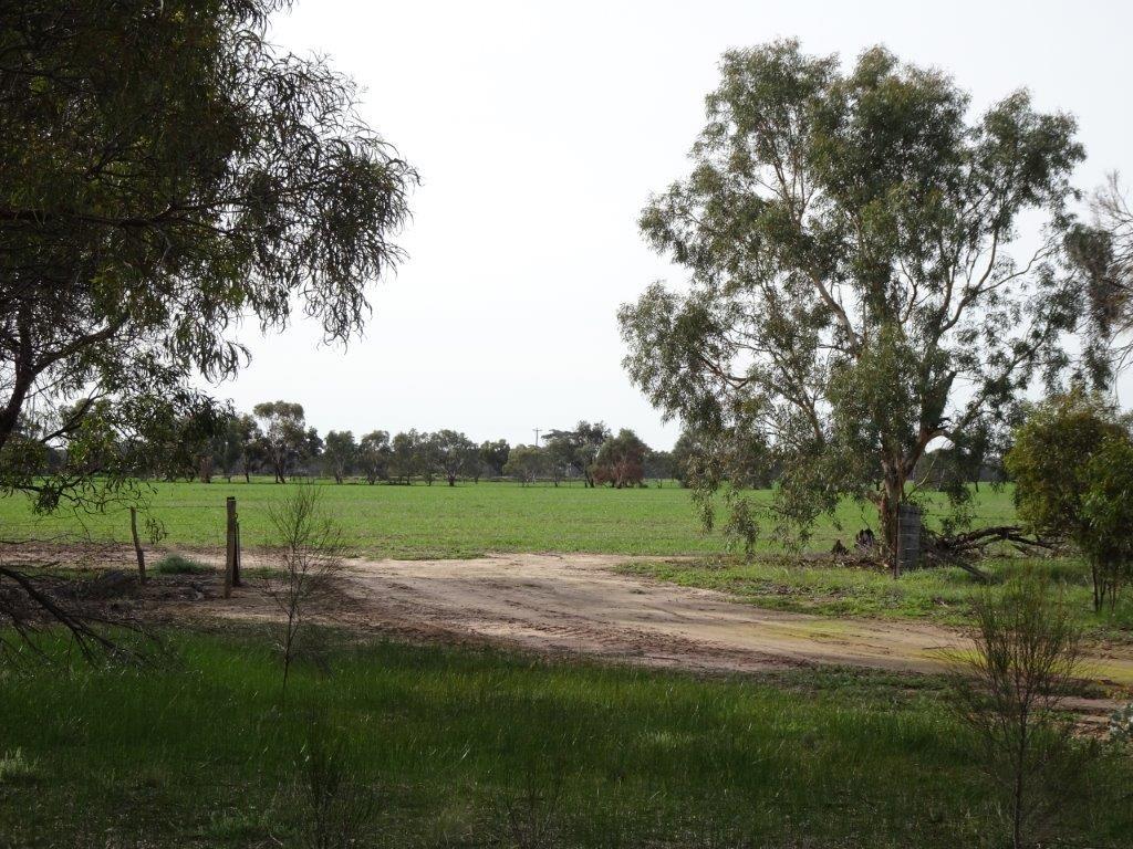 Lot 5980 Brookton Kweda Road, Aldersyde WA 6306, Image 0