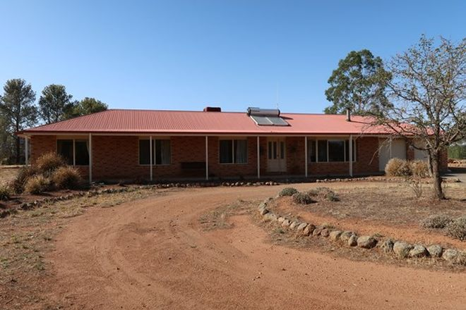Picture of 8242 Newell Hwy,  BECKOM, ARDLETHAN NSW 2665
