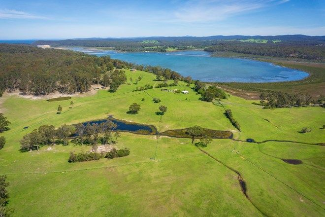 Picture of 149 Wapengo Lake Road, WAPENGO NSW 2550