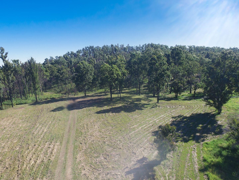 1850 Busbys Flat Road, Wyan NSW 2469, Image 1