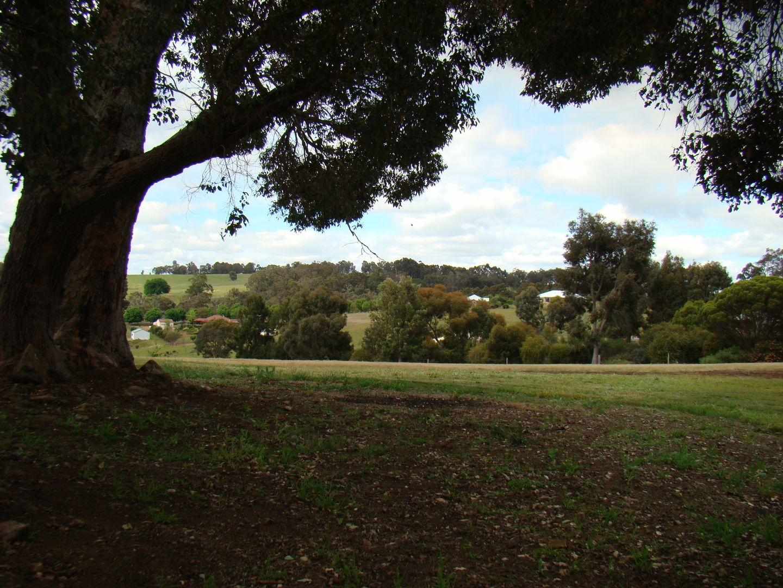 6 Cottonwood close, Kangaroo Gully WA 6255, Image 1