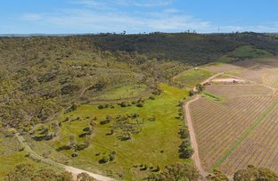 Picture of Lot 3 OHLMEYER PARK ROAD, Emu Flat SA 5453
