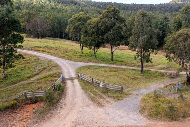 Picture of 4194 Paddys Flat Road, UPPER TOOLOOM NSW 2475