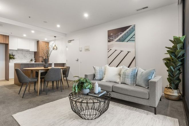 Picture of 101/15 Bowes Street, PHILLIP ACT 2606