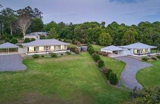 Picture of 1-15 Bush Tucker Court, Eumundi QLD 4562