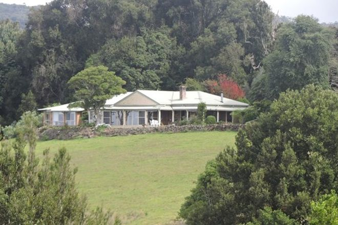 Picture of 182 Nashs Road, DORRIGO NSW 2453