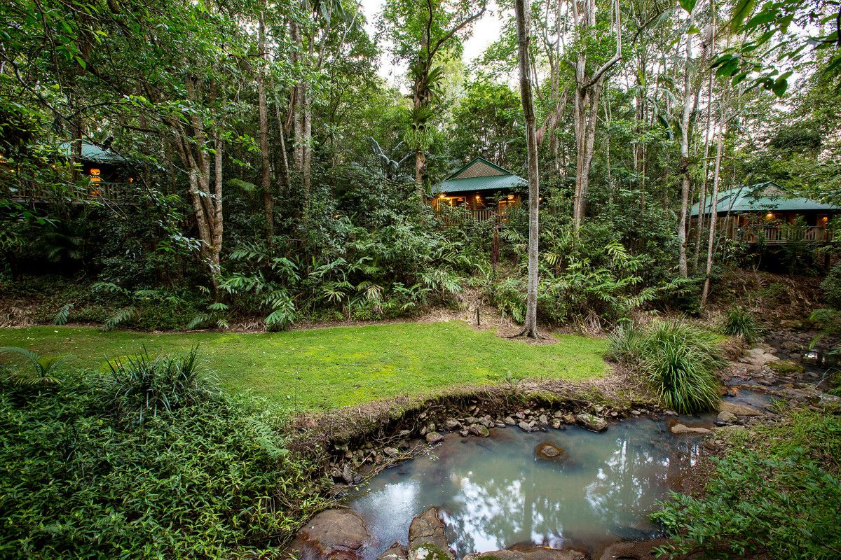 78 Narrows Road, Montville QLD 4560, Image 0
