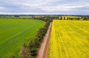 Picture of 208 Roping Pole Road, Ganmain NSW 2702