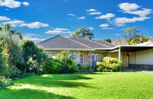 Picture of 7 McArthur Avenue, Rostrevor SA 5073