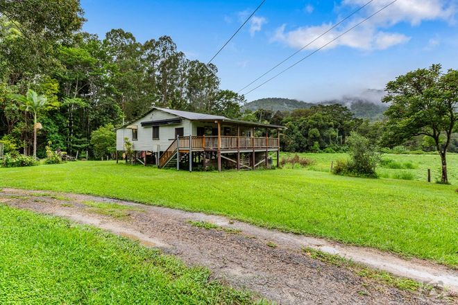 Picture of 41 Solomons Road, MOUNT WARNING NSW 2484