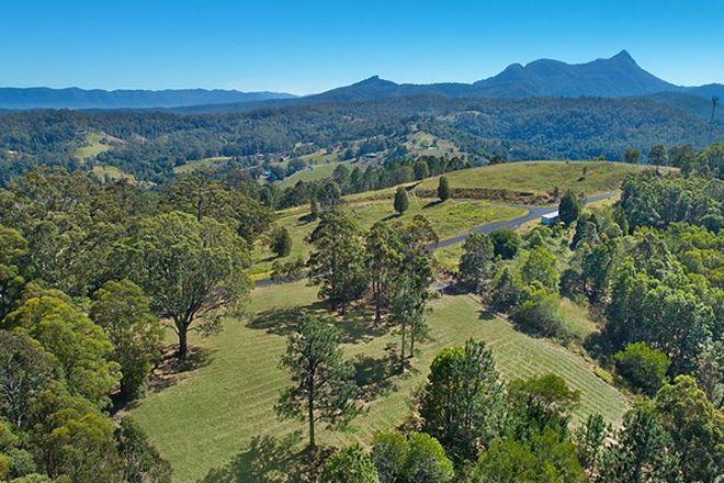 Picture of Lot 10, 2981 Kyogle Road, Mebbin Springs,, KUNGHUR NSW 2484