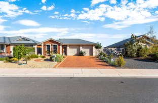 Picture of 4 Roesler Road, Nuriootpa SA 5355