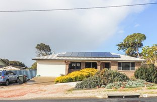 Picture of 17 Flinders Avenue, Port Lincoln SA 5606