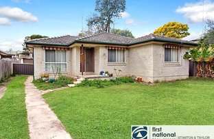 Picture of 38 Algie Crescent, Kingswood NSW 2747