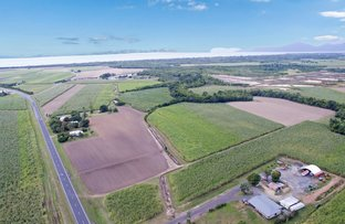 Picture of 188-190 Yorkeys Knob Road, Yorkeys Knob QLD 4878