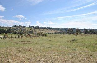 Berrilee Road, Orange NSW 2800