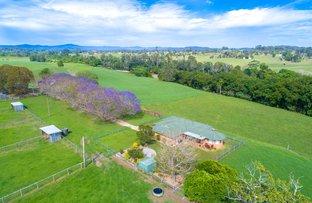Rosewood NSW 2446