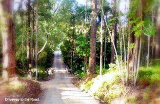 Picture of 122 Lindeman Road, Beerwah QLD 4519