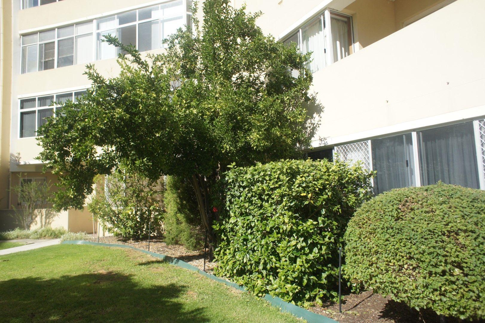 307/45 Adelaide Terrace, East Perth WA 6004, Image 1