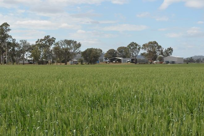Picture of 243 Bacons Road, KELVINHAUGH QLD 4401